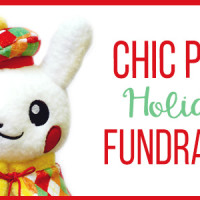 Chic Pixel Holiday Fundraiser