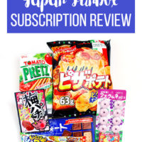 Japan Funbox Subscription Review