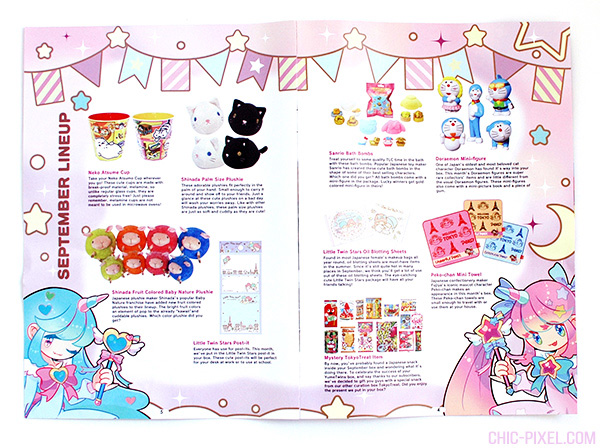 Yume Twins kawaii subscription box review pamphlet